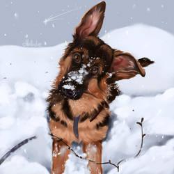 Snowy Wonder by Mellodee