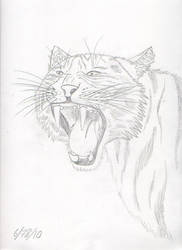 Tiger by ToraKage-BlackLight