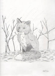 Fox by ToraKage-BlackLight