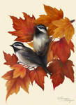 Autumn Symphony by Tammara