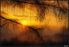 tropic sun by ssteku