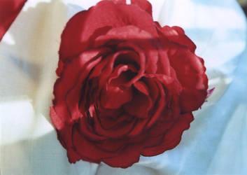 Fake Flower by Rykan