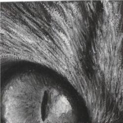 Eye by Temawei