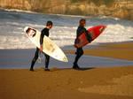 surfers by DarkLinkFire