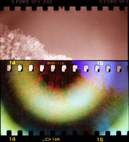 psychedelic dayz revesited : day 4 by pekipeki60minutes