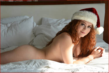 The Ladies of Christmas: Allie Summers 4 by Saledin