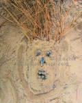 Dirt Man by JolieBonnetteArt