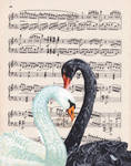 Swans by Charlene-Art