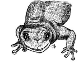 lizard by Hamanic