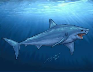 Shark Week 2014: Great White Shark by Metal-Lark