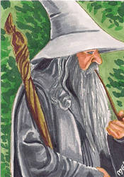 Gandalf2 by Purple-Pencil