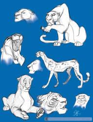 Big Cats Doodles by marimoreno