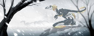 Polar Raptors by marimoreno