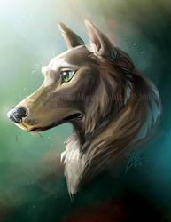 Wolf-dog by marimoreno
