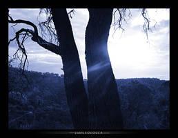 Sun shine by subaqua