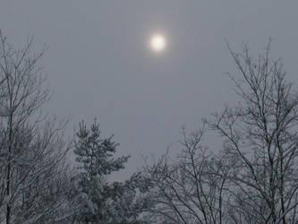 hazy shade of winter by monkeman