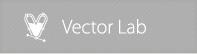Vectorlab by vectorlab1