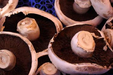 Mushrooms by bobcraton