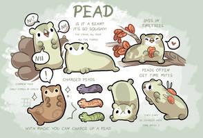 Pead by griffsnuff