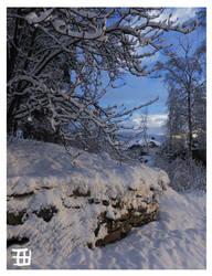 Fresh snow by griffsnuff
