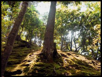 Hills of Ginkakuji by ManixTT