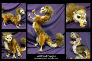 Antlered Dragon by WormsandBones