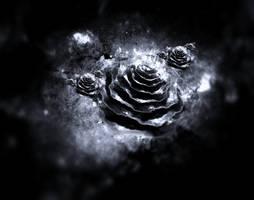 Fractal roses by Jakeukalane