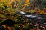 Salmon River, Autumn Study by greglief