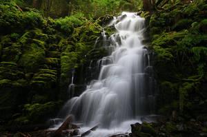 White Branch Falls by greglief