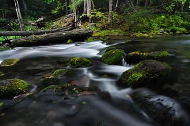 Cold Spring Creek, October 2016 by greglief