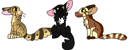 i was bored so ask my RP characters by OtterstepOfMoonclan