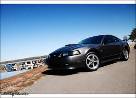 2003 Ford Mustang Mach 1 by bubzphoto