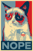Grumpy Cat Nope poster by xpsr
