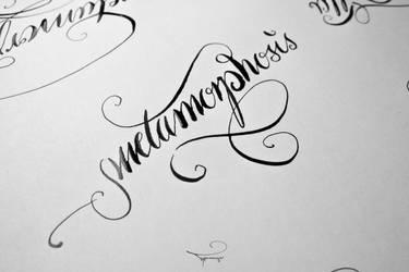 metamorphosis by Typomonger