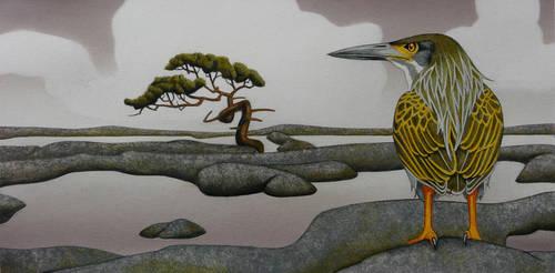 lesser rock heron by opiumtraum