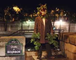quai de bourbon by boiled-sweet