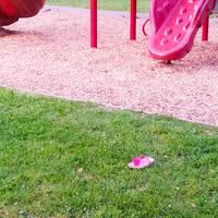Pink Flip Flop El Cerrito 4/29/2016 by squirrelbrained