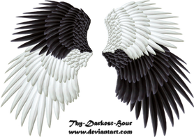 Good and Evil Wings 04 PNG by Thy-Darkest-Hour