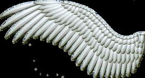 Spread Silver Wings PNG by Thy-Darkest-Hour