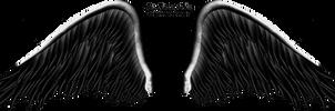 Elegant Black Wing PNG by Thy-Darkest-Hour