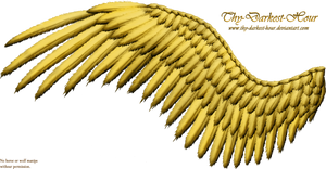 Feathered Wing - Golden by Thy-Darkest-Hour