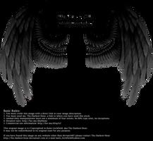 Winged Fantasy - Black-Gray by Thy-Darkest-Hour