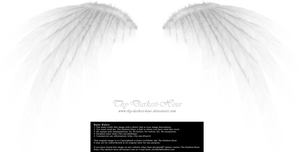 Simplistic Wing - White by Thy-Darkest-Hour