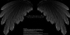 Simplistic Wing - Black by Thy-Darkest-Hour