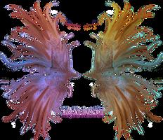 Frilled Fairy Wings 01 by Thy-Darkest-Hour