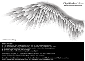 Winged Perfection - Silver by Thy-Darkest-Hour