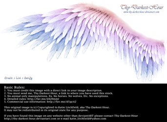 Winged Perfection - Pink-Blue by Thy-Darkest-Hour