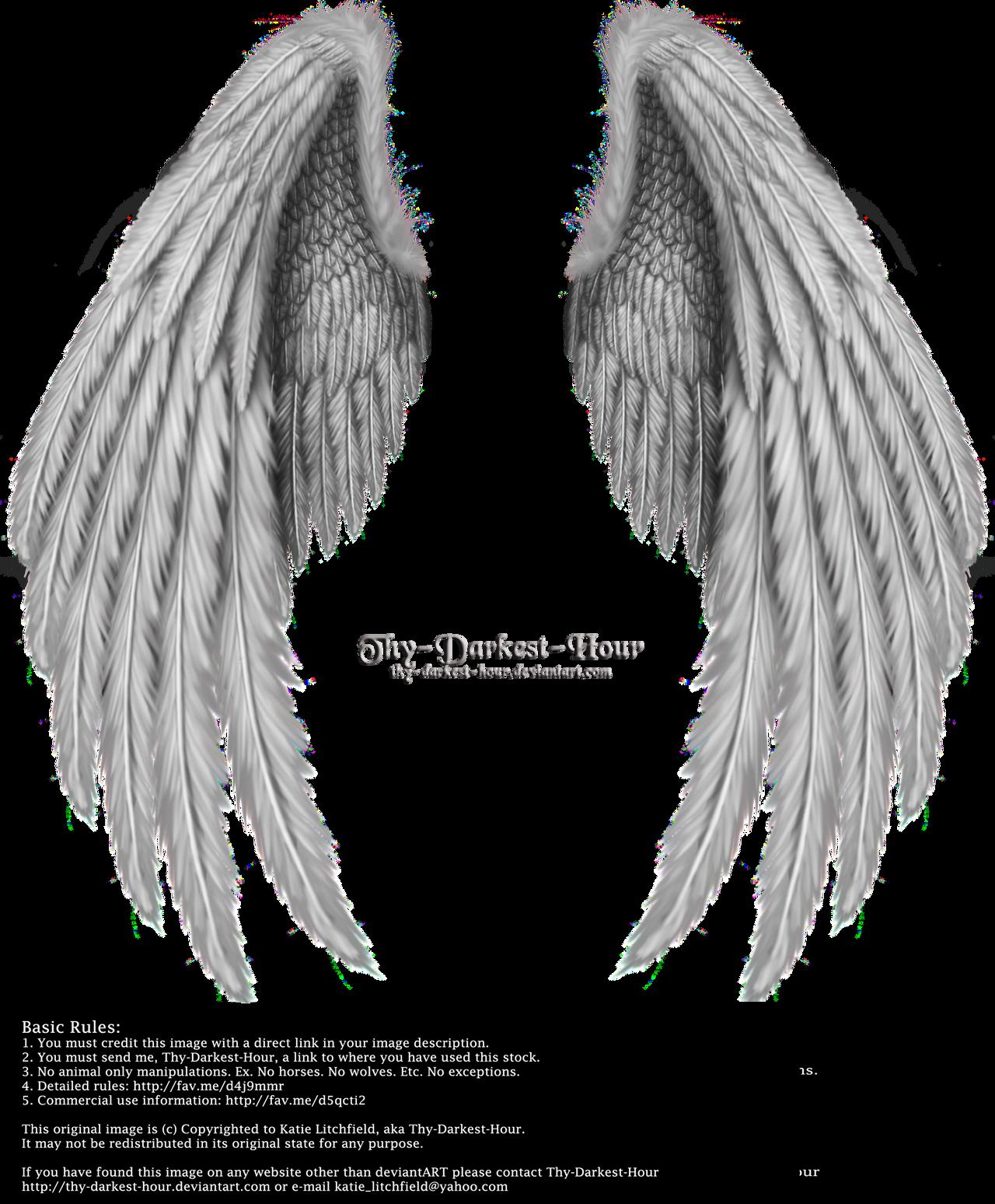 Winged Fantasy V.2 - Silver by Thy-Darkest-Hour