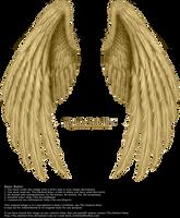 Winged Fantasy V.2 - Golden by Thy-Darkest-Hour
