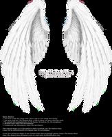Winged Fantasy V.2 - White by Thy-Darkest-Hour
